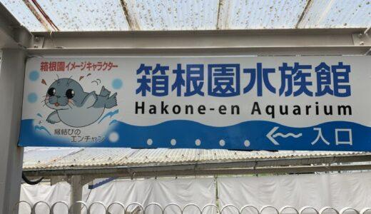 【ゆるゆるアザラシショー】箱根園水族館に行ってみた【赤ちゃん連れにオススメ!】